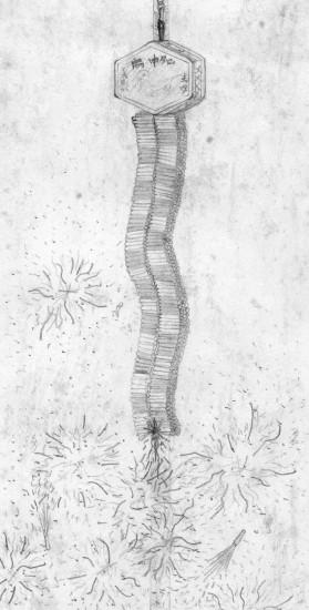 Firecracker String
